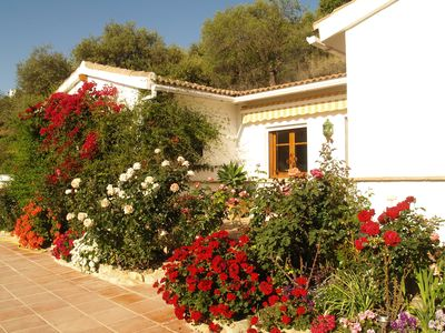 Photo for Bed and Breakfast in rural Andalucia