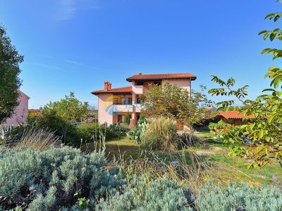 Photo for Apartment 1945/24413 (Istria - Bale), Pets welcome, 5000m from the beach
