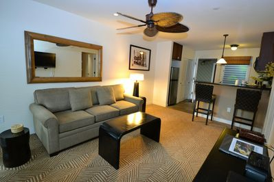 Open concept with brand new sleeper sofa