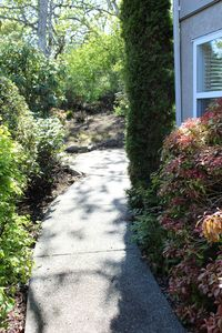 Pathway to garden and patio
