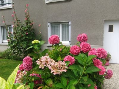 Photo for The hydrangea house