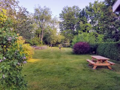 Beautiful lush backyard with a picnic table and raised garden.