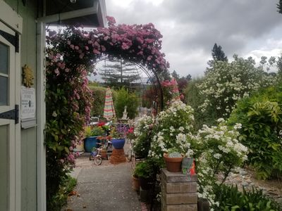 Photo for Beautiful large front yard Garden with umbrellas and tables