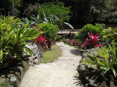 property is landscaped and has beautiful plants and fruit of all sorts