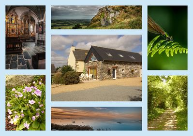 Between land & sea. Cottage for 5. Special offer from 13 June to 27 June.