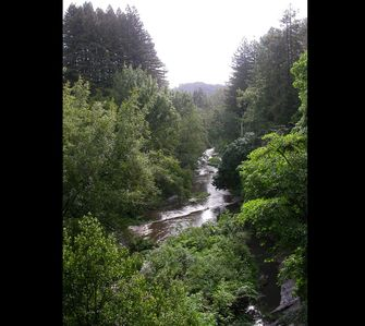 Photo for RiverFront TREEHOUSE ANCIENT REDWOODS  STUDIO ~AMAZING VIEWS!! OUTDOOR SHOWER!!