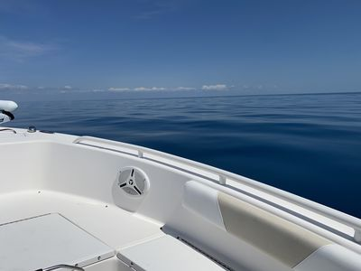 Come enjoy the calms waters of the Gulf of Mexico... rent a boat and explore!