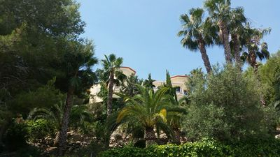 Photo for Suite or room in GRAEFLICHEM MAERCHENSCHLOSS on the Costa Blanca