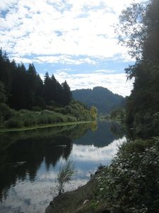 Photo for Cottage on River, Deck with beautiful river view, Private, In the Redwoods
