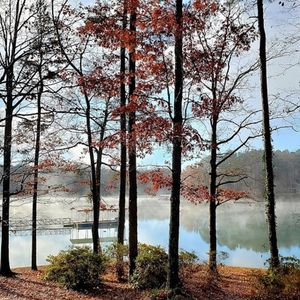 Backyard View in Fall.  My favorite time at Lake Keowee.
