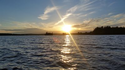 Photo for Secluded Cottage on Great Moose Lake