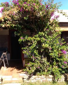 Photo for Apartment Vacation Rental in Stintino, Sardegna