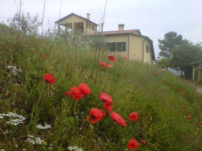 Photo for 3BR Chateau / Country House Vacation Rental in monte San savino, Toscana