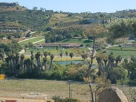 Photo for 1BR House Vacation Rental in Bonsall, California