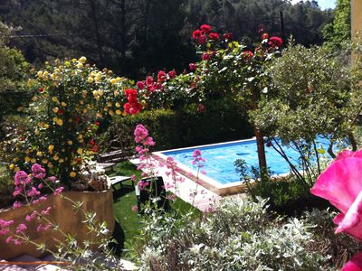 Photo for Beautiful cottage in the middle of the Garrigue