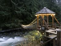 Magical secluded woodsy getaway