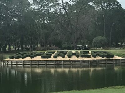 Photo for Condo at Innisbrook - home of the PGA Valspar Tourn