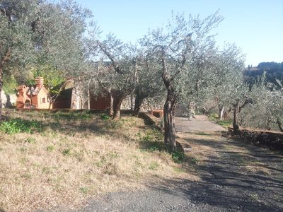 Photo for Small farm house surrounded by olive trees in front of the sea.