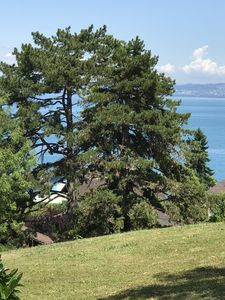 Photo for AMAZING Amphion-les-Bains / Evian / Publier - Beautiful Lake View