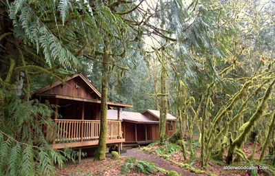 Photo for Romantic, Private Mt Hood Cabin with Wood-Burning Stove