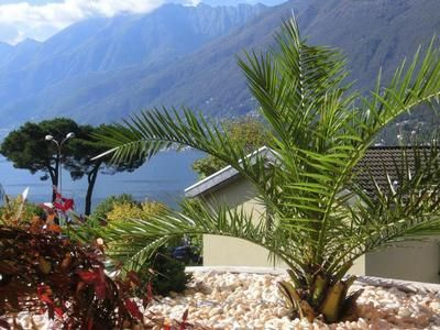 Photo for Holiday apartment Ascona for 2 - 4 persons with 1 bedroom - Holiday apartment