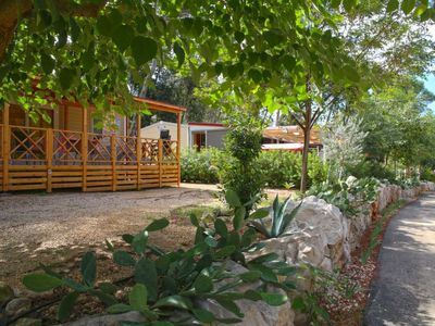 Photo for Vacation home Tavolara in Biograd na Moru - 6 persons, 2 bedrooms