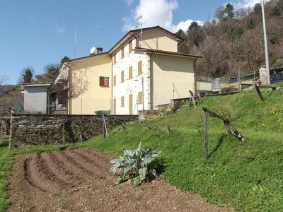 Photo for Holiday house Querceta for 6 - 8 persons with 3 bedrooms - Holiday house