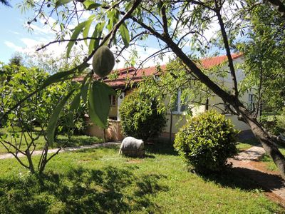 Photo for House - Bungalow with swimming pollen drove 2 - 5 people in Porec