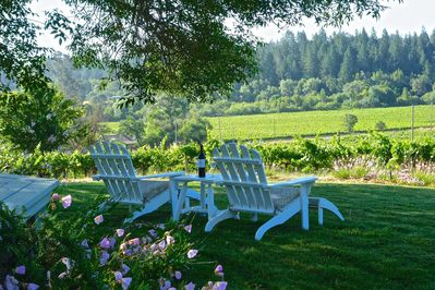 Relax and enjoy our magnificent vineyard views.