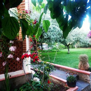 Photo for Villa with large garden between Taormina and Etna