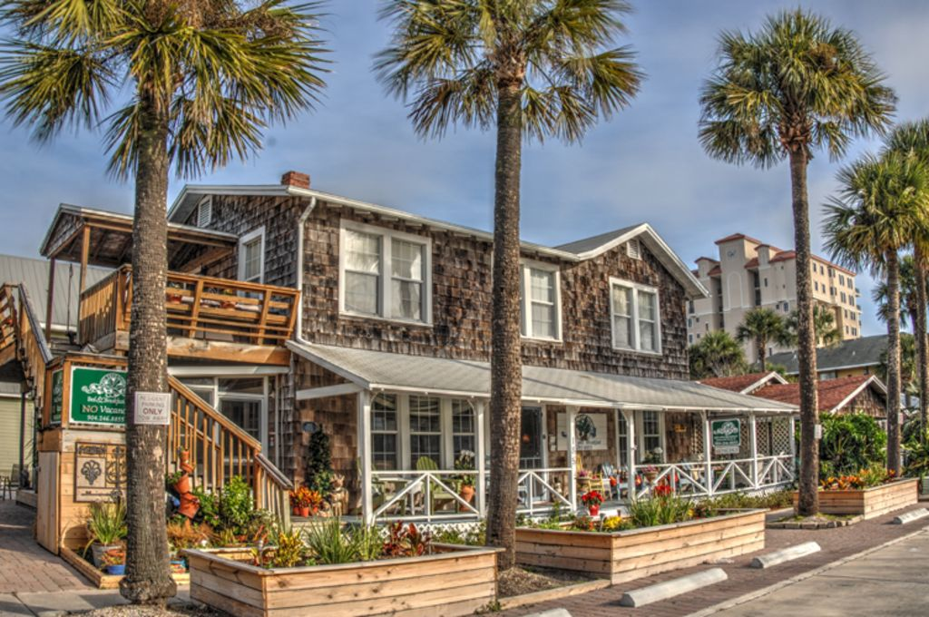 The Fig Tree A Great Place To Gather Beaches Jacksonville