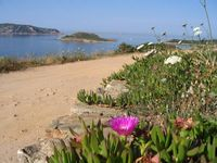 Lovely apartment in lovely surroundings with many beautiful beaches within 5 mins drive