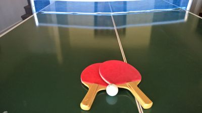 Ping Pong Table Top Over Pool Table. Fun!
