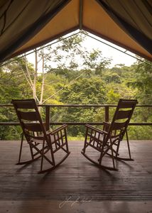 Photo for Rainforest Glamping. Where luxury meets adventure.