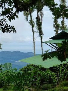 Photo for Rainforest Experience Remote & Exotic Lodge