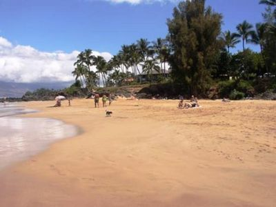 Photo for 2B/2Ba Ocean View Unit, Perfectly Situated 100 Yards from Kamaole Beach I