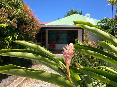 Photo for Spacious bungalow in Sainte - Anne in tropical gardens between beach and countryside