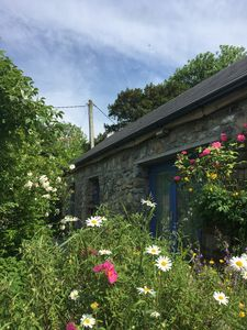Photo for Wild garden cottage, Clooneencapullagh