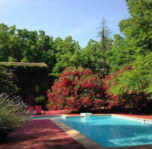 Photo for Avignon, house 200 m², shady garden and swimming pool
