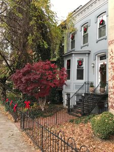 Photo for Charming English Basement Apartment in Historic Dupont Circle