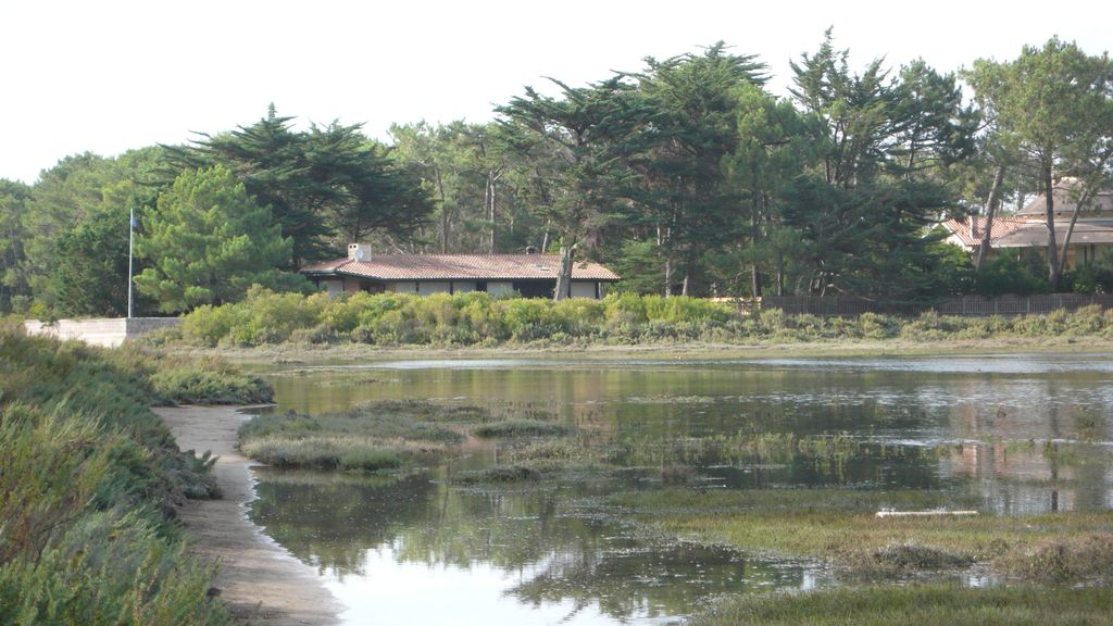 Villa Cap Ferret, 44 hectares 300 m from the Bassin and 800 m from ...