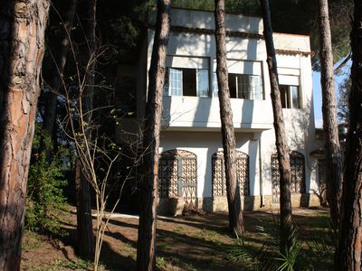 Photo for Villa in pine forest 50 meters from the sea
