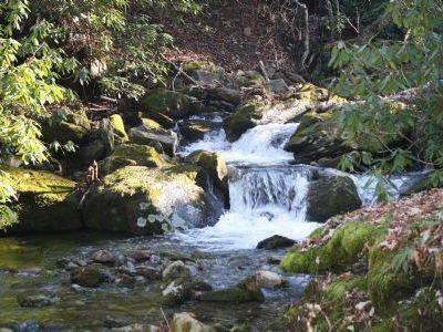Photo for A Shanty Creek Retreat, Creek - Close to High Country Attractions,Last minute Discount available-...