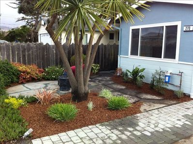 Front of house - front patio and new plants. Front Yard view towards ocean