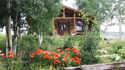 Gorgeous cabin near crested butte gunnison homeaway for Cabins near crested butte co