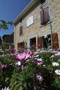 Photo for Cottage with sundial in the heart of Minervois