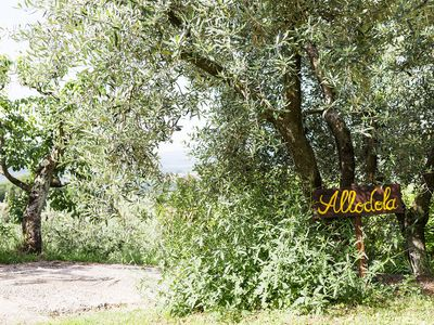 Photo for House in the countryside, in the vineyard with pool, panoramic position near Florence
