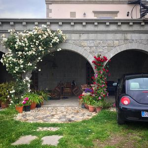 Photo for 5 minutes from Lake Bolsena surrounded by greenery