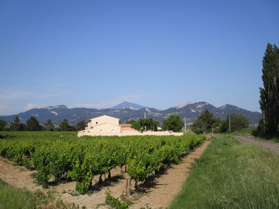 Photo for Cabassole cottage in Provence