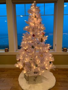 Christmas tree waiting for presents